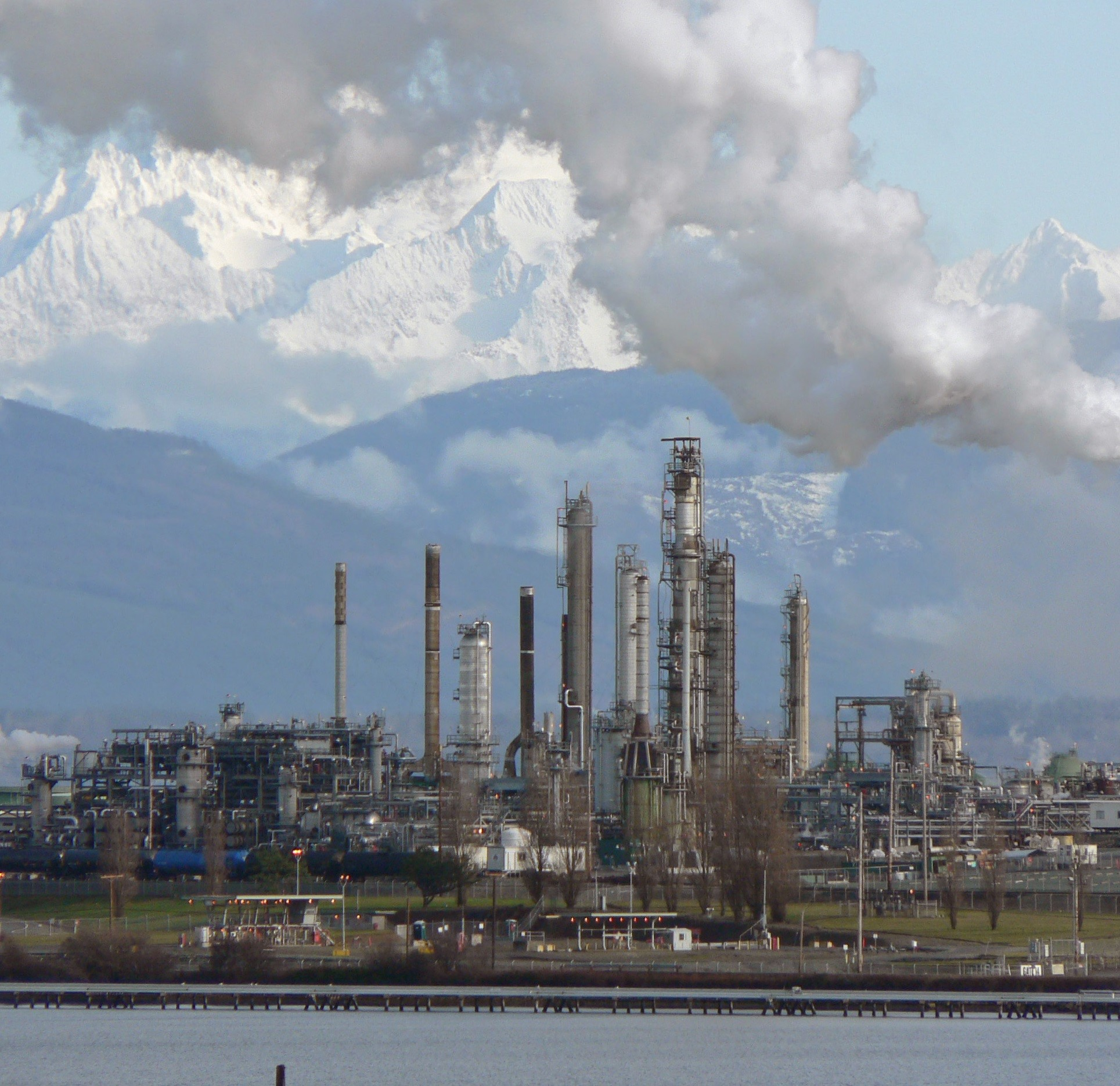 case research as well as environmentally friendly financial risk review for your petrochemical industry