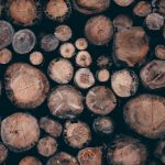 Pulp and paper resources, wooden logs