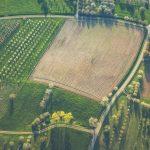 Agriculture soils MT