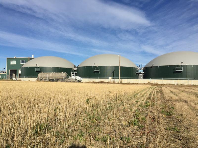 Sejarah dan Potensi Pengembangan Biogas di Indonesia